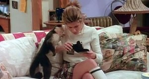 Which 'Friends' Pet Are You?
