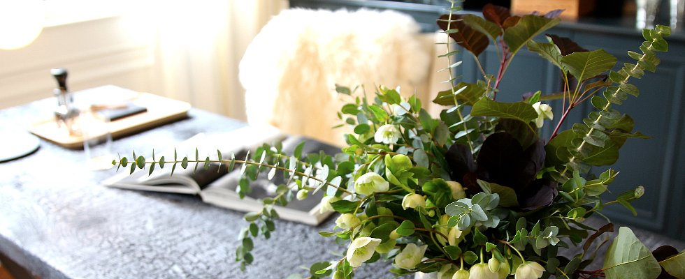 10 Houseplants That Can Actually Improve Your Health