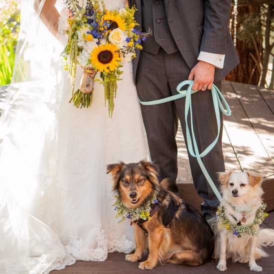 Wedding Favors For Dog-Lovers