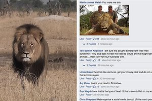People Are Flooding This Dentist's Facebook After He Was Named As The Hunter Who Killed Cecil The Lion