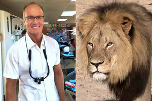 Lion-Killing Dentist Walter Palmer Is Apparently Under Police Protection