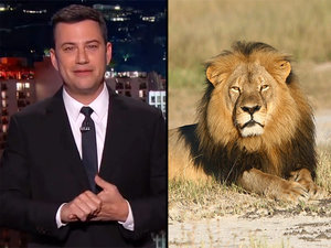 Jimmy Kimmel's Emotional Segment on Cecil the Lion's Death Helped Raise $150,000 for Wildlife Conservation