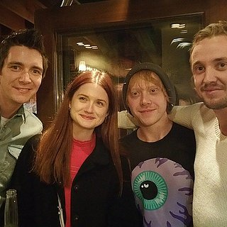 Harry Potter Cast Reunion Pictures