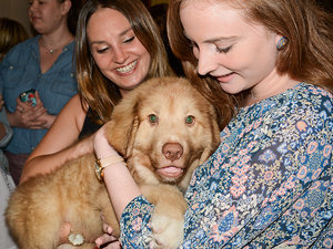Celebrate DOGust 1st with North Shore Animal League America and PEOPLE