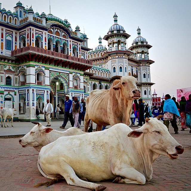 Janakpur Nepal  city photos : Janakpur, Nepal | 28 Stops You Simply Have to Make in Asia | POPSUGAR ...