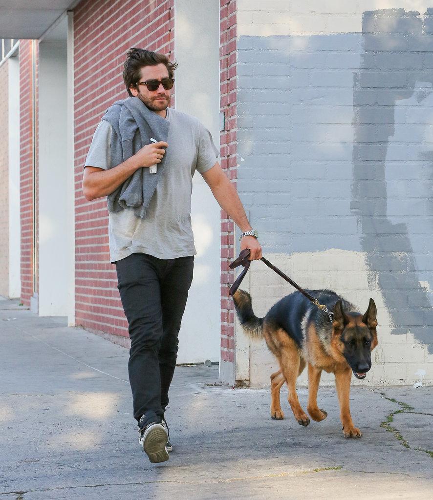 Jake Gyllenhaal had his German Shepherd Atticus by his side in LA in April 2015.