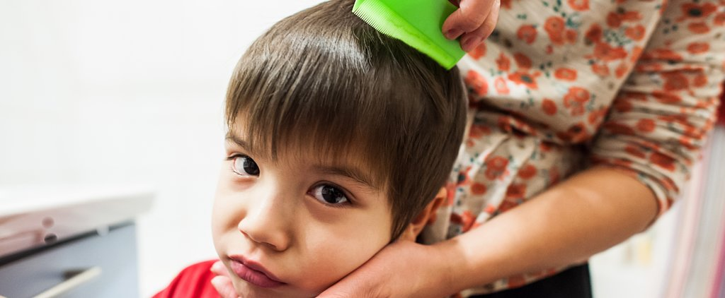 Exactly What to Do If You Think Your Child Has Lice