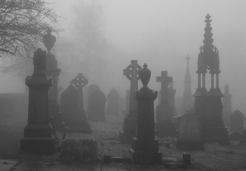 Picnic at a Graveyard
