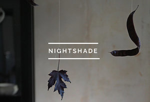 Table of Contents: Nightshade
