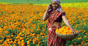 100 Million Women In Developing Countries To Receive Free Cell Phones