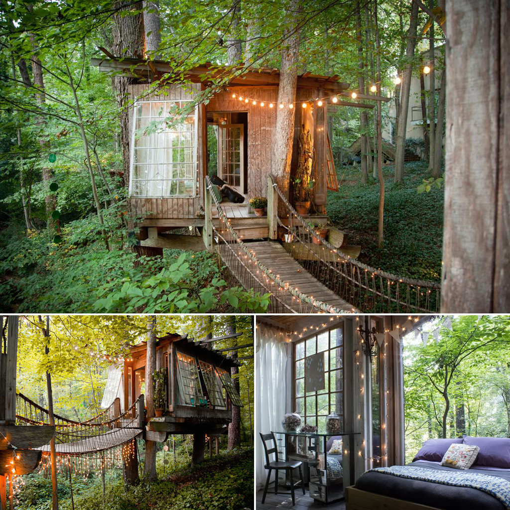 Website For Houses For Rent: Tree House Rentals
