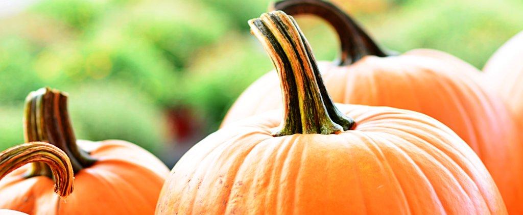 7 More Reasons to Love Pumpkin Even More This Fall Season
