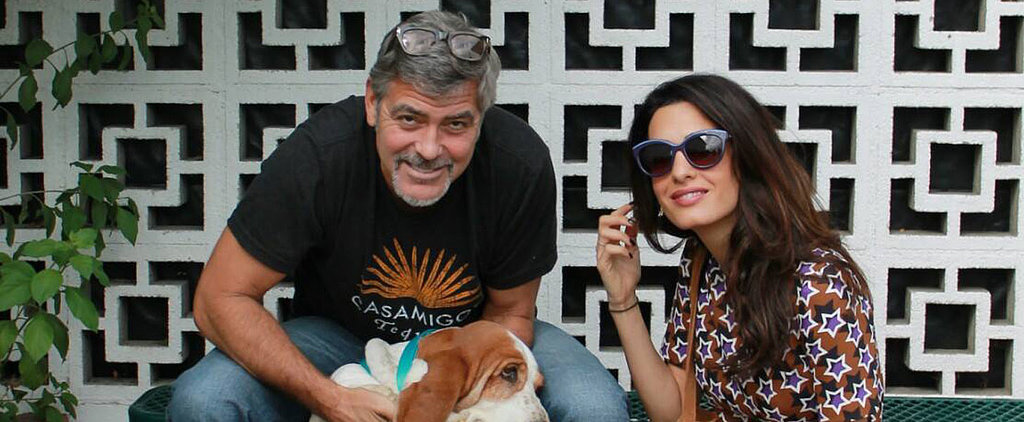 George and Amal Welcome an Adorable New Addition to the Family