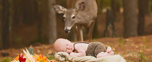 A Deer Photobombed This Newborn's Photo Shoot, and the Pictures Couldn't Be Any Cuter