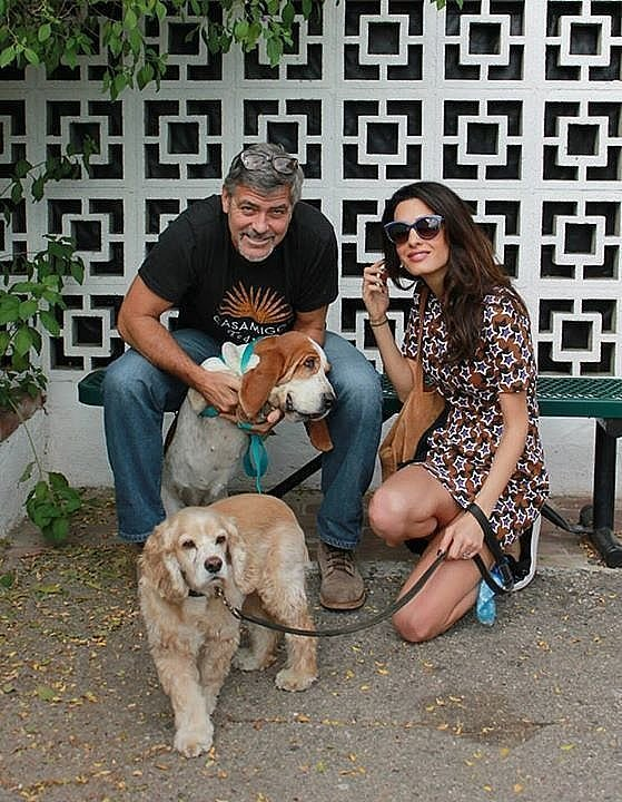 In October 2015, the famous duo adopted a dog from an LA rescue shelter.