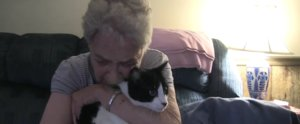 Sick Kitty Defies the Odds and Makes a Miraculous Recovery