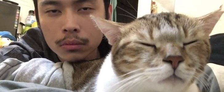 """We're Totally Obsessed With This Cat Bopping Along to """"Hotline Bling"""""""