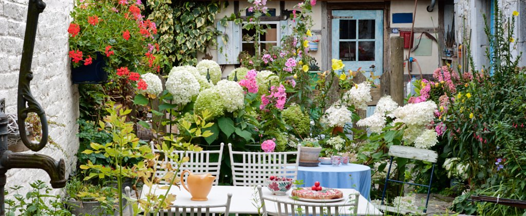 8 Tips For Growing a Garden in the Shade