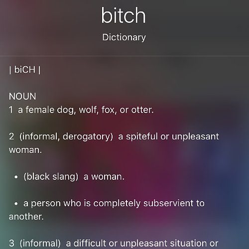 How Siri Defines the Word Bitch