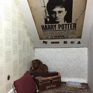 Harry Potter Cupboard Room Pictures