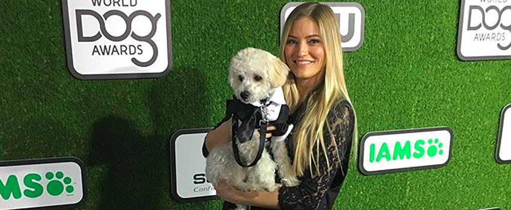 The Adorable Way iJustine's Dog, Matty, Channels His Inner Justin Timberlake