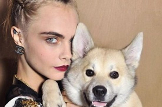 Cara Delevigne's Dog Had A More Glamorous Day Than You