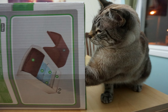 We Review the ScoopFree Self-Cleaning Litter Box
