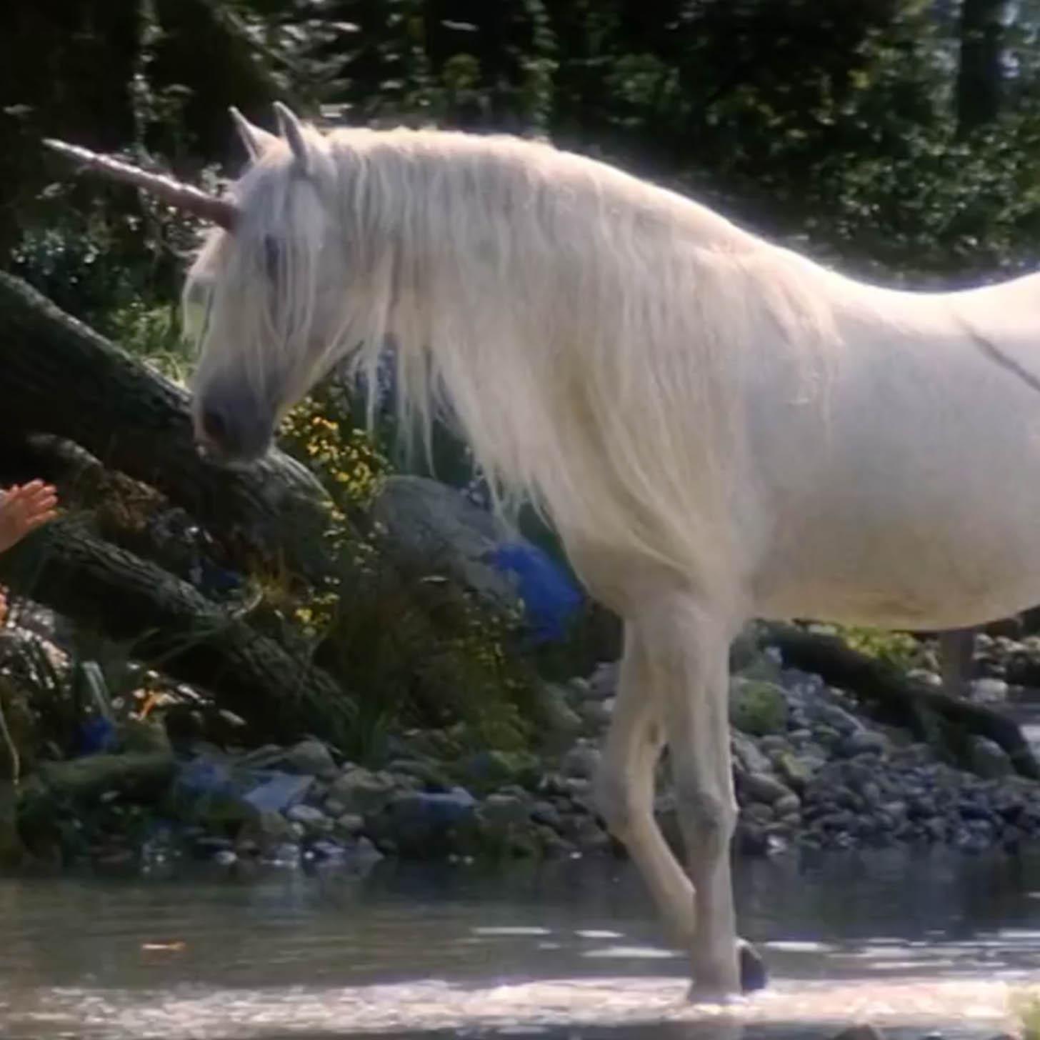 meet techs real unicorns