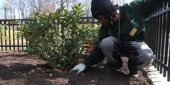 How Planting Trees Helped This Ex-Offender Turn His Life Around