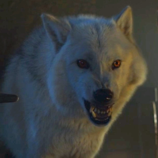 Did Jon Snow Warg Into His Wolf Ghost on Game of Thrones?