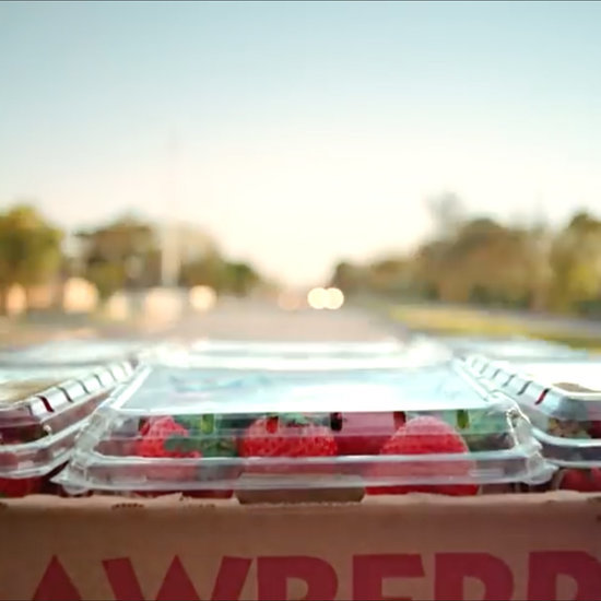 Video Follows Journey of a Strawberry to Show Food Waste