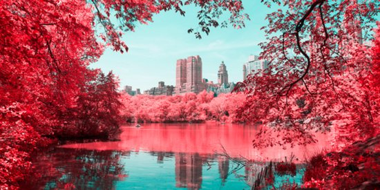 Spring Is A Majestic Wonderland In These Infrared Photos Of NYC