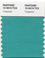 And the Pantone Color of the Year for 2010 Is . . .