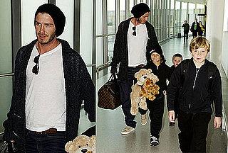 Photos of David Beckham