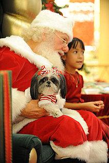 Did Santa Meet, Surpass or Fall Short of Expectations?