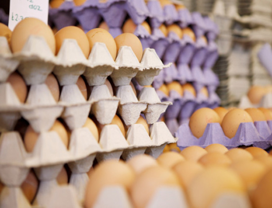 Federal Government Outlines Tighter Food Safety Guidelines