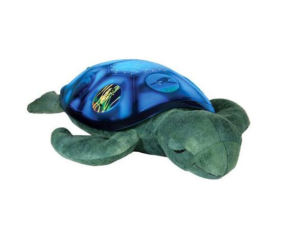 An Illuminating Turtle