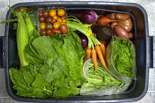 Why a CSA Is Good For You