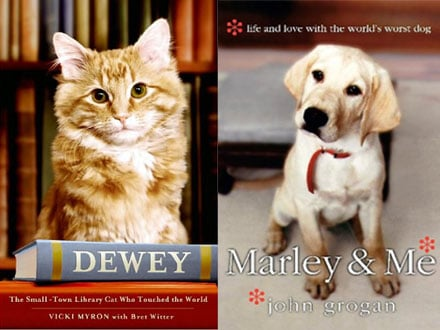 Pet Books to Curl Up With This Holiday