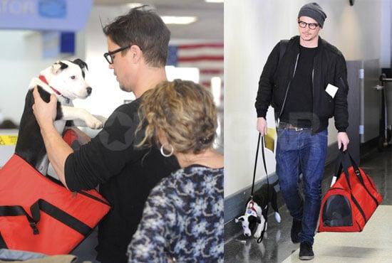 Photos of Josh Hartnett With His Dog at LAX