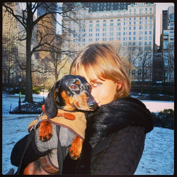 Karlie Kloss snuggled with an adorable dog. Source: Twitter user DerekBlasberg
