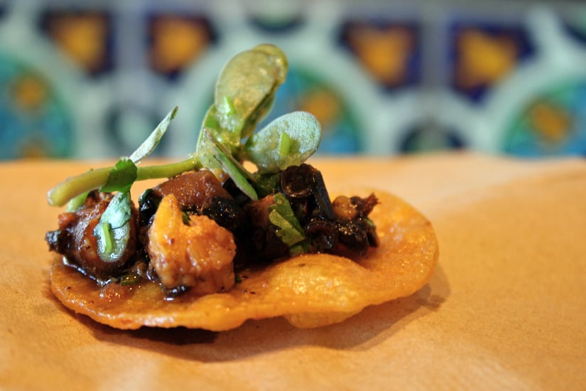 Charred Octopus Taco Chip
