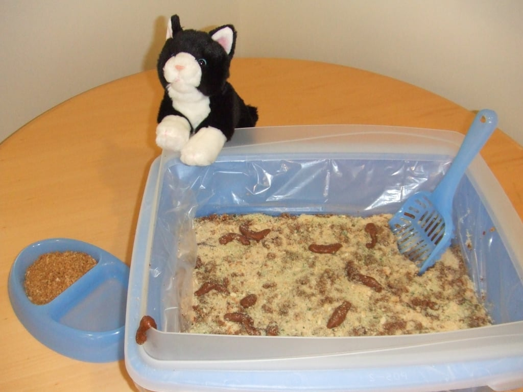 Bake Up Kitty Litter (Cake)