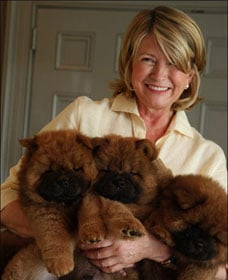 Sugar Shout Out: Martha's Puppy Love