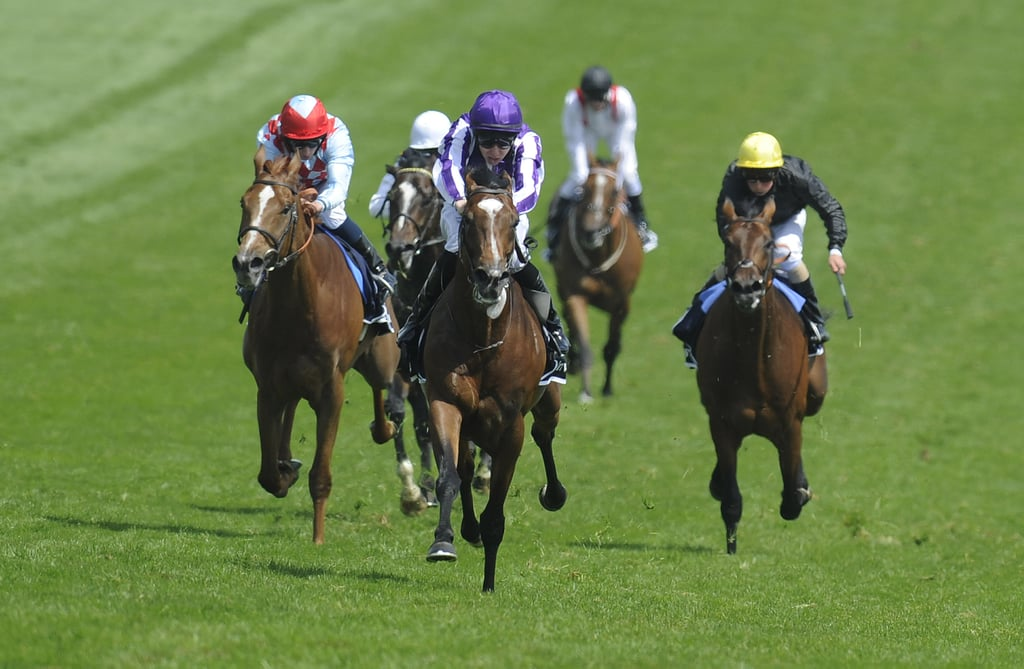 Jockeys raced at the derby.