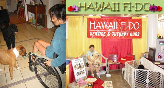 Out and About: Hawaii's Hawaii Fi-Do