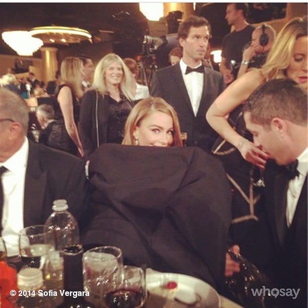 She got a little wild as the night went on, hiding herself in her large dress. Source: Instagram user sofiavergara