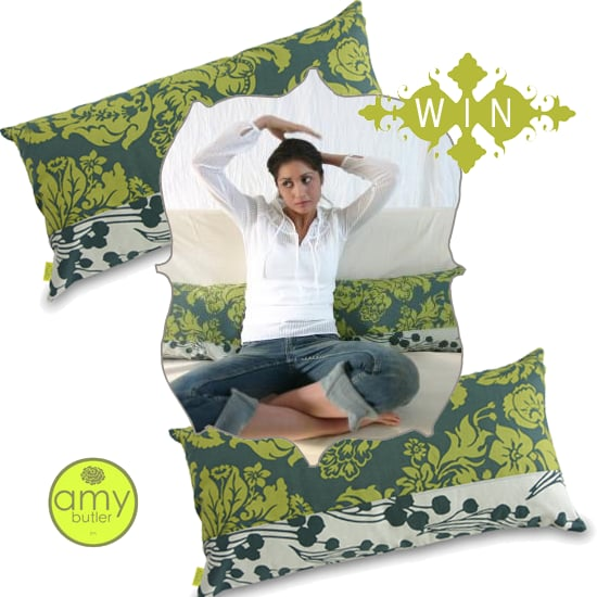 Win Two Amy Butler Throw Pillows!