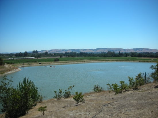 Do You Have a Lake or Pond on Your Property?