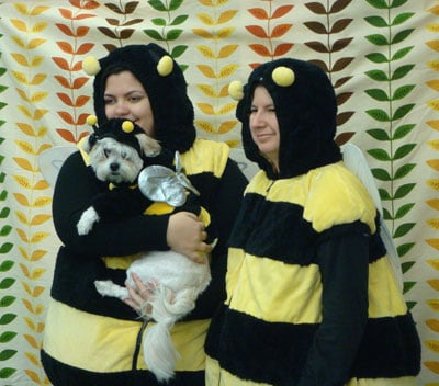 It's a Bee Hive!